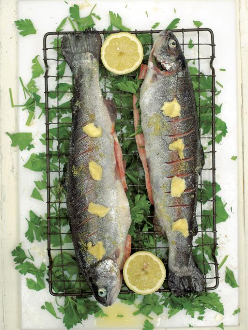 GrilledTrout