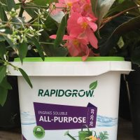 Fertilizer – magic for your containers